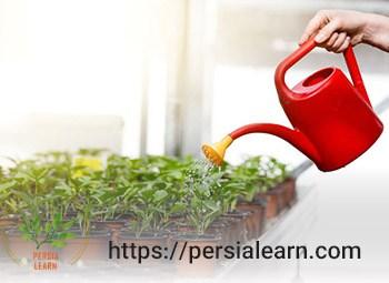 روش های تشخیص زمان آبیاری گیاهان آپارتمانی